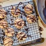 Garabatos cookies just drizzled in warm chocolate.