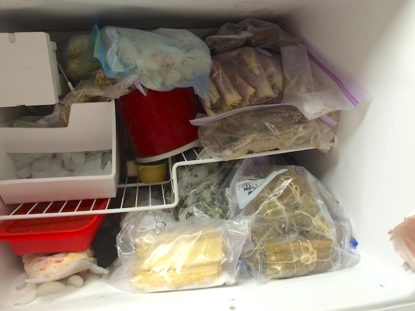 tamales in my freezer