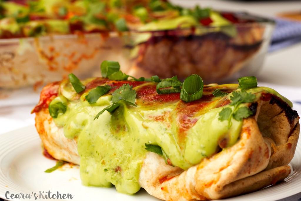 Vegan Cinco de Mayo Burrito
